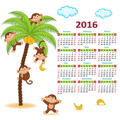 Calendar with monkeys on palm 2016 - vector illustration, eps