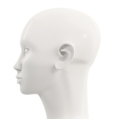 side view of white female mannequin head