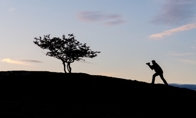 Photographer with camera in silhouette with tree