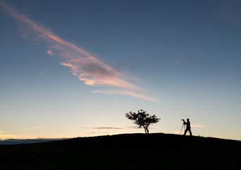Photographer with tripod in silhouette with tree