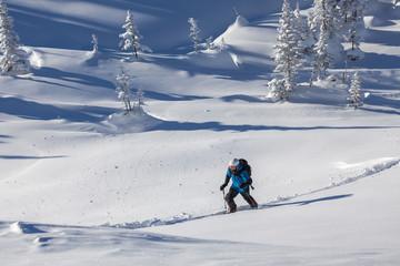 Skier walking in winter forest