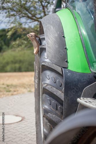 Hochzeitsschuhe Auf Einem Traktor Stockfotos Und Lizenzfreie Bilder