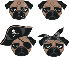 Set of funny pug
