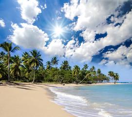 Auszeit: Traumurlaub an einem einsamen Sandstrand in der Karibik :)