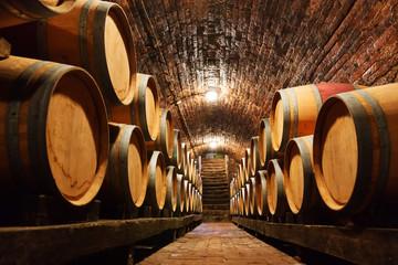 Oak barrels in a underground wine cellar