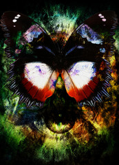 illustration of a butterfly and woman eye, mixed medium, abstract color background.