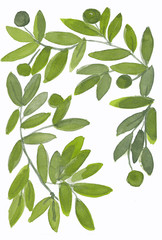 Background with leaves, branches and hand drawn. Watercolor design elements. Nature pattern