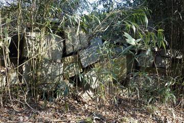 The abandoned stone