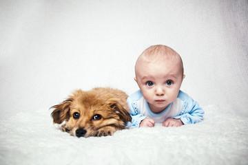 Tiere sind die besten Freunde
