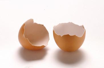 Cascaras de huevo sobre fondo blanco.