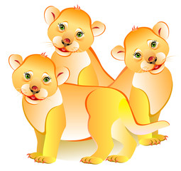 Illustration of three little lions, vector cartoon image.