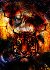 portrait lion and Tiger face, profile portrait, on colorful abstract  background. Abstract color collage with spots and wall structure.