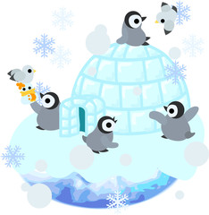Baby penguins are living in the igloo.