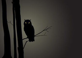 Silhouette Illustration Of An Owl