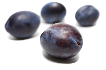 Plum Damson isolated on white background