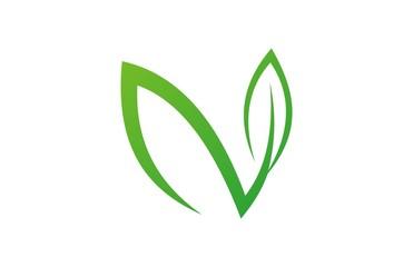 green leaf letter n logo