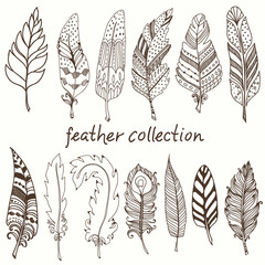 Rustic decorative feathers