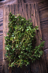 Fresh aromatic Thyme from garden