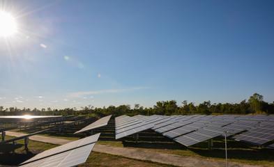 Photovoltaic solar energy panels farm
