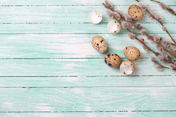 Quail eggs, willow  branches on wooden background.