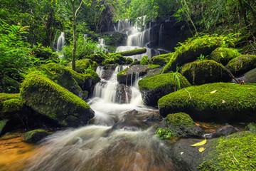Printed roller blinds Waterfalls beautiful waterfall in green forest in jungle at phu tub berk mo