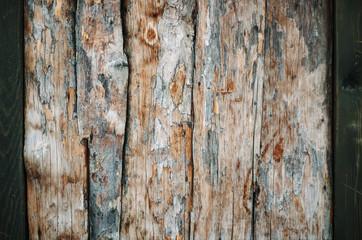 Photo sur Toile Les Textures Wood background