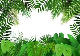 Naklejka premium Dżungla na białym tle