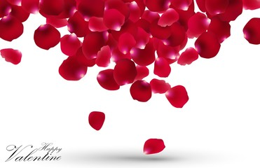 Valentines day with rose petals on white background