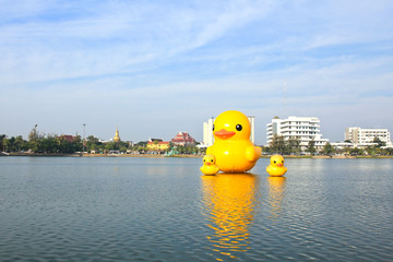 The yellow ducks is the most populars view for photos. The park
