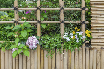 flowers growing along bamboo wooden fence in traditional garden