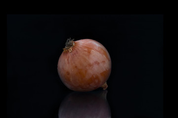 Zwiebel vor schwarzem Hintergrund