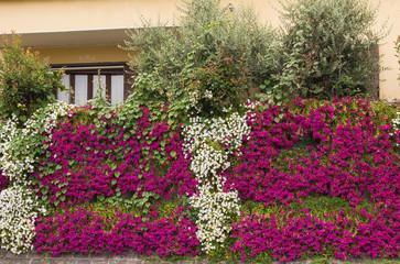 Giardino decorato con tanti fiori