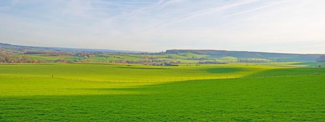 Keuken foto achterwand Pistache Sunny meadow on a hill in winter