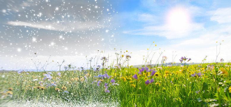 Winter und Frühling