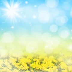 Natural Spring bright background with blooming dandelions