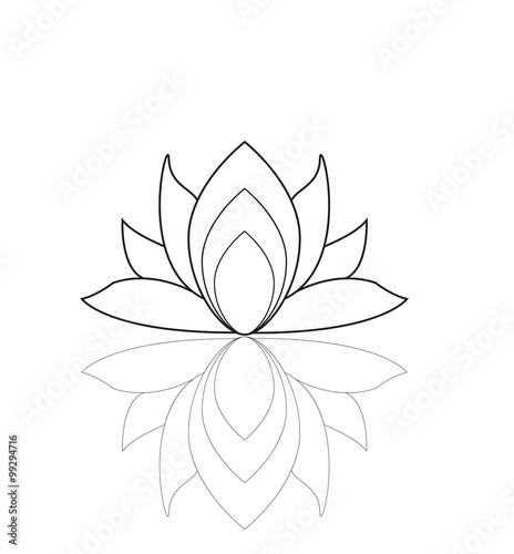 Lotus Flower Isolated On White Vector Fiore Di Loto Vettoriale
