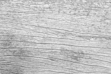 White old wood pattern texture background. Wooden floor cracks of tabletop. Dry wood board sepia tones. Desk made of wood and natural textures.