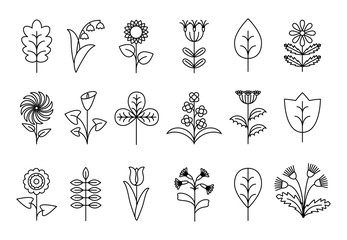 Wall Mural - Stylized line flowers and leaves
