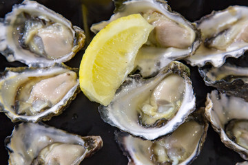 Opened Oysters on dark tray with lemon ready to eat