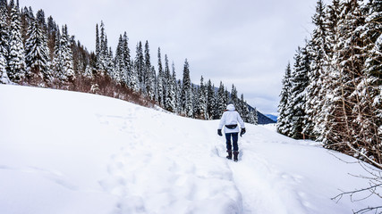 Wall Mural - Walking through the snow at Sun Peaks Ski Resort in the Shuswap Highlands in central British Columbia
