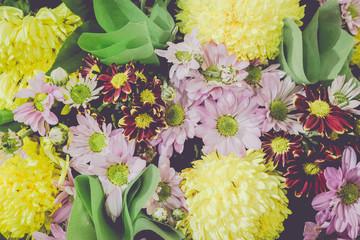 Vintage old flower backgrounds - vintage effect style