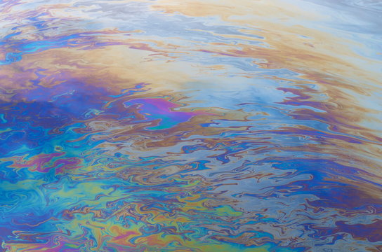 oil slick on the water