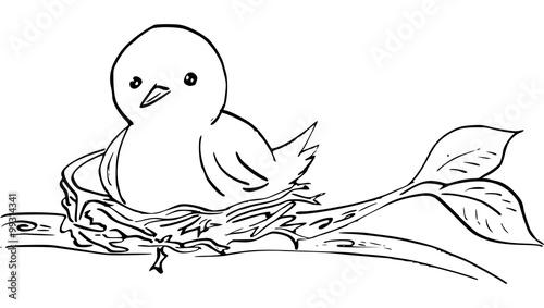 quot inkttekening vogel op vogelnest quot photo libre de