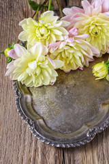 Dahlia flowers on silver tray