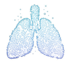 lungs with oxygen bubbles Isolated on white background