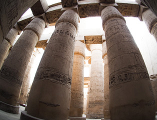 columns with hieroglyphics, Luxor, Egypt
