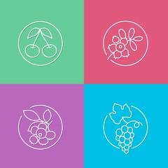 fresh berries linear icons set 01