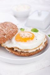 Bun with egg, cottage cheese and fresh basil on a white plate for breakfast. closeup.