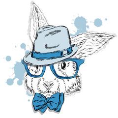 Rabbit - hipster . The rabbit in the hat . Rabbit clothing . Vector animal. Otrytka rabbit . Hipster. Fashion & Style. Print .