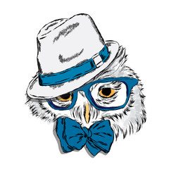 Owl wearing a hat and sunglasses . Owl - hipster . Fashion & Style. Print . Hipster. Bird vector . Painted owl . Cute owl .